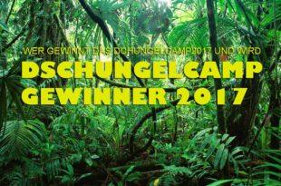 Wer ist Dschungelcamp Gewinner 2017?