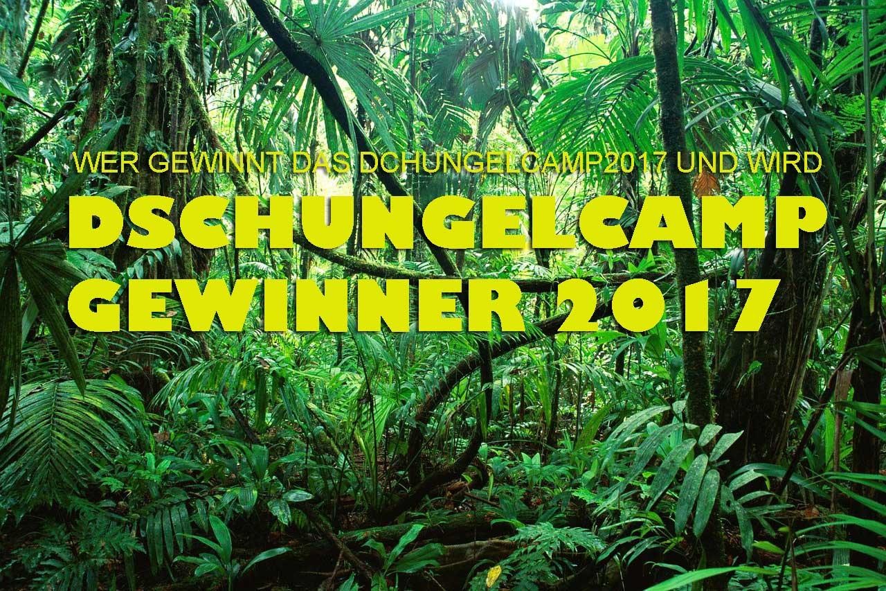 ᐅ Dschungelcamp Gewinner 2017 Das Ist Der Neue